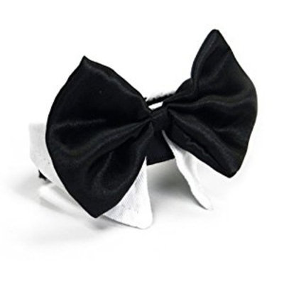 Platinum Pets Formal Pet Bow Tie and Collar, 9 to 10-Inch, White