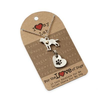 For the Love of Dogs Labrador Retriever Necklace and Pet Charm Set in Silver/Gold