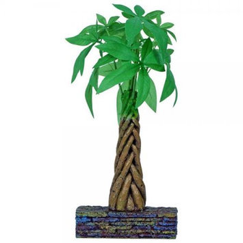RC Hagen 12210 Marina Betta Kit Money Tree Ornament