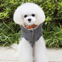 Hot Sale New Pet Dog Winter Hooded Coat Two Feet Cotton-padded Clothes With Mustache Pattern(Grey)