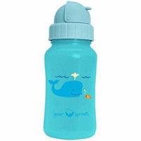 Green Sprouts HG1528991 Aqua Bottle - Aqua