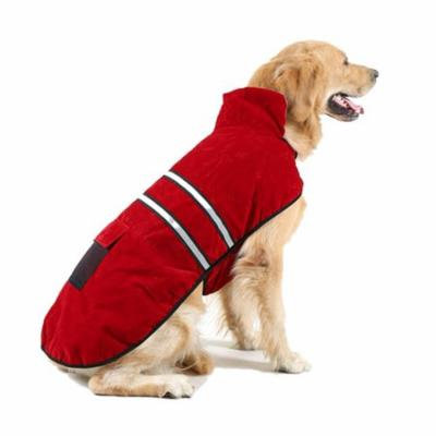 Double - layer warm dog fluorescent clothing 2017 trend style
