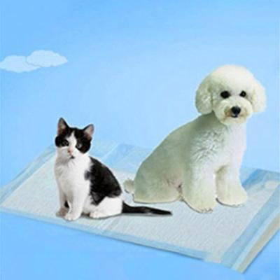 20 Pcs Comfortable Disposable Non-Woven Fabrics Pets Dogs Toilet Training Pads Dog Training Diapers
