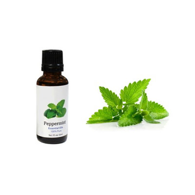 Yphone ealth Care Organic 100% Pure Pepermint Oil Essential