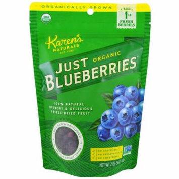 Karen's Naturals, Organic Just Blueberries, Freeze-Dried Fruit, 2 oz (pack of 6)