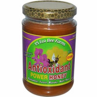 Y.S. Eco Bee Farms, Antioxidant Power Honey, 13.5 oz (pack of 2)