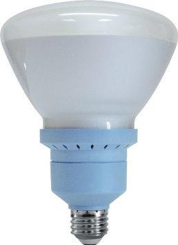 GE 26W Reveal CFL Bulb (67467)