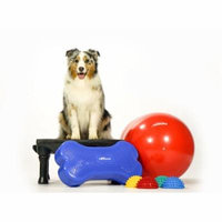 FitPAWS CanineGym in a Box 2016
