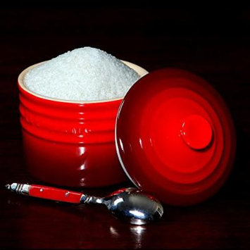 The Spice Lab No. 49 - French Grey 'Dried' Salt (Fine) - Premium Gourmet Salt - Size 2 lb Resealable Bag
