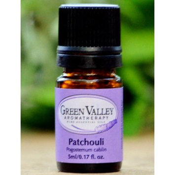 Fragrant Organic Patchouli Plant - Perfume Oils - Pogostemon - 4