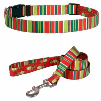 Yellow Dog Design Holiday Stripes Pet Standard Collar and Lead Set