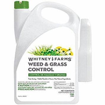 WEEDandGRASS CONTRL 1GAL