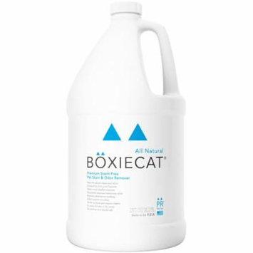 Boxiecat Premium Scent-Free Stain & Odor Remover, 1 Gallon