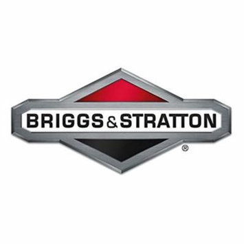 Briggs & Stratton 190656GS Oil