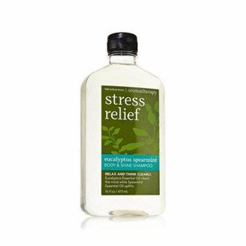 Bath & Body Works Stress Relief Eucalyptus Spearmint Body & Shine Shampoo