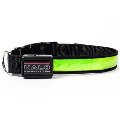 Halo Mini LED Safety Dog Collar Green [Options : Small]