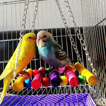 Girl12Queen Pet Bird Parrot Parakeet Budgie Cockatiel Cage Hammock Swing Toys Hanging Toy