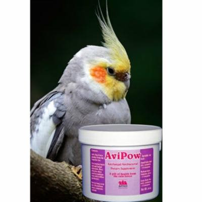 Avitech Avipow Anti-fungal & Anti-bacterial For Birds 16oz (.45 Kg)