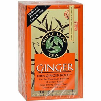Triple Leaf Tea, Tea Bags, Ginger, 1.4-Ounce Bags, 20-Count Boxes by Triple Leaf Tea