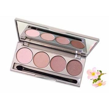 Honeybee Gardens Skinny Dip Refillable Eye Shadow Palette | Natural Ingredients | Gluten Free, Vegan, Paraben Free