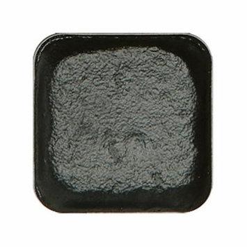 European Body Art EncoreHAIR&BEARD Alcohol Activated Professional Makeup Palette Refill Pan, Black Coral
