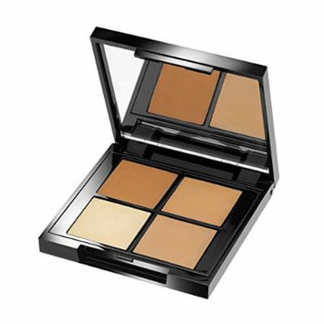 Organic Glam Concealer Palette by The Organic Pharmacy Medium 4g