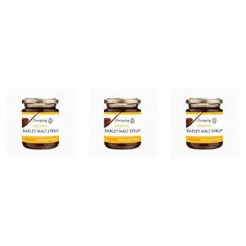(3 PACK) - Clearspring Barley Malt Syrup - Organic| 330 g |3 PACK - SUPER SAVER - SAVE MONEY
