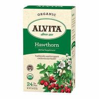 Alvita Organic Herbal Tea Bags, Hawthorn Berry, 24 Count by Alvita