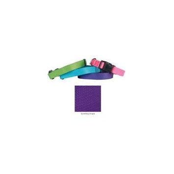 Coordinating Nylon Dog Collars Leads & Harnesses for Dogs Choose Sizes & Colors(10 to 16 x 5/8 Inch Collar - Ultra Violet)
