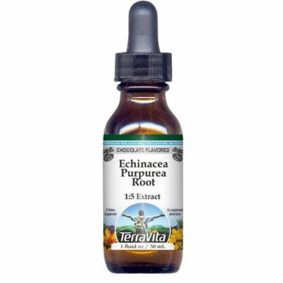 Echinacea Purpurea Root Glycerite Liquid Extract (1:5) - Chocolate Flavored (1 oz, ZIN: 522425) - 2-Pack