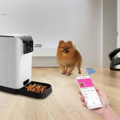 Smart Pet Feeder with Voice Recorder and Timer Programmable Automatic Food Dispenser for Dogs (Small and Medium) and Cats RYSTE