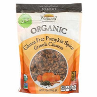 New England Naturals Organic Gluten - Free Spice Granola - Pumpkin Clusters - Case of 6 - 10 oz.