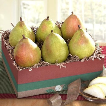 Colossal Comice Pears In Christmas Tree Gift Crate with Handmade Solid Chocolate Christmas Tree [Colossal Comice Tree Crate]