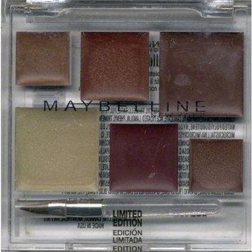 Maybelline Limited Edition Holiday Lip Pallette 5.2g (0.18oz) : Dark Chocolate