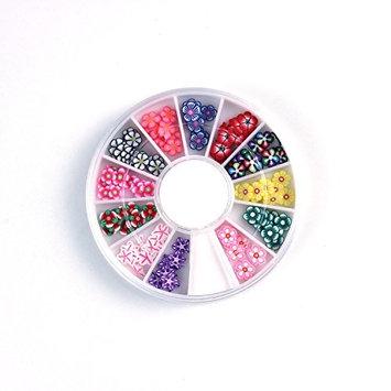 Hrhyme 3D Flower Slice Nail Art Decoration Fimo Box Packaged