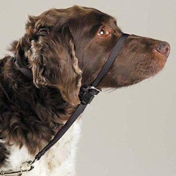 Gentle Leader Dog Head Collars - Training Stop Pulling Lunging Unwanted behavior(Medium - 25 to 60 lbs)