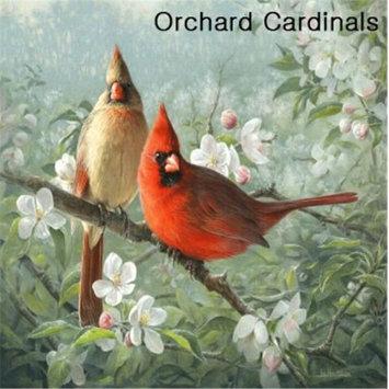 Hi-Look Inc. Hautman Brothers Cardinal single design - Pack of 6