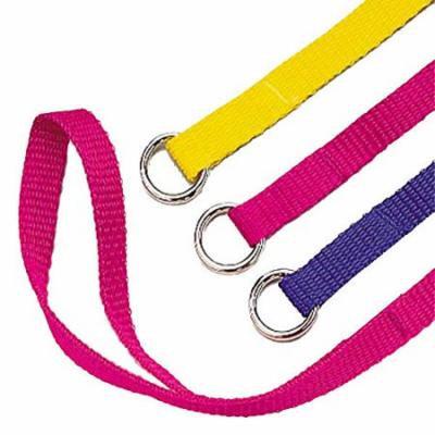 Slip Style Kennel Dog Lead Bulk Packs Wholesale Dogs Leads Vet Groomer Shelter(6 Foot x 1 inch)
