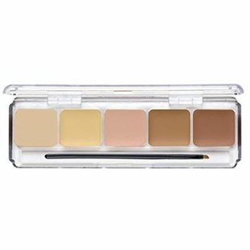 Dermaflage Full Coverage Concealer Palette, 5 Colors with Brush: Cover Acne, Scars, Dark Circles, Tattoos with High Pigment Pro Formula