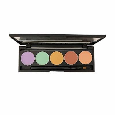 Dermaflage Color Corrector Palette, 5 Colors with Brush, Color Correcting Makeup, Concealer for Dark Circles, Acne, Scars - Makeup Magic from the Pros