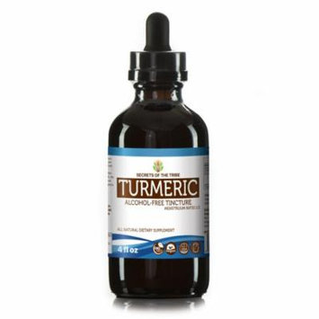Turmeric Tincture Alcohol-FREE Extract, Organic Turmeric (Curcuma Longa) Dried Root 4 oz
