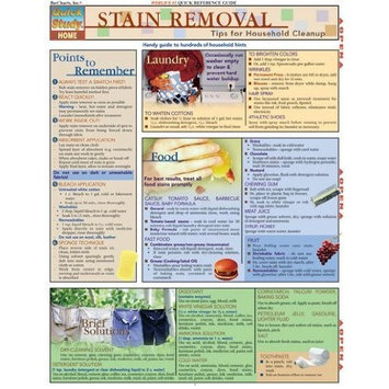 BarCharts- Inc. 9781572225046 Stain Removal- Pack of 3