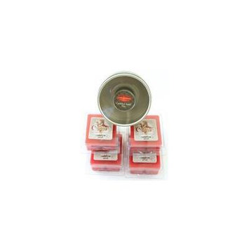 Candle Aire Scented Wax Refill - 4 Courtneys Wax Melts with Empty Reusable Tin - CINNAMON-APPLE