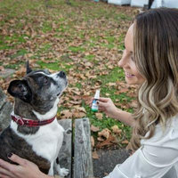 Natural Dog Relief From Allergies & Irritants 100% Natural,! 30 ml Best Value, No Side Effects! Made In USA