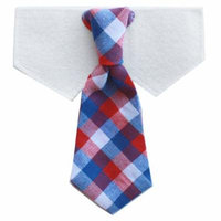 Tail Trends Formal Neck Tie Dog Collection for Teacup to Medium and Large Breeds