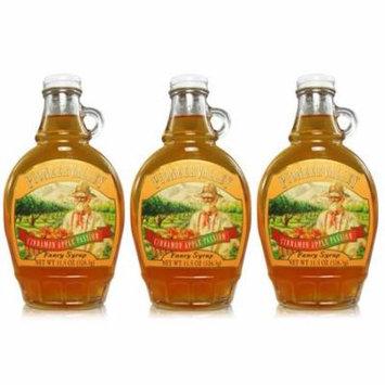 Pioneer Valley Gourmet Cinnamon Apple Passion Fancy Syrup 11.5 oz. - 3 pack