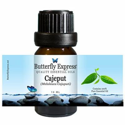 Cajeput Essential Oil 10ml - 100% Pure by Butterfly Express
