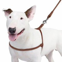 Rolled Leather Dog Harness for Small Dogs Handmade, Black