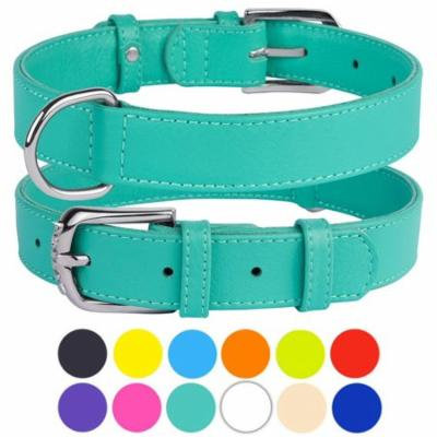 Leather Dog Collar Puppy Collars for Small Dogs Soft Padded, Mint Green