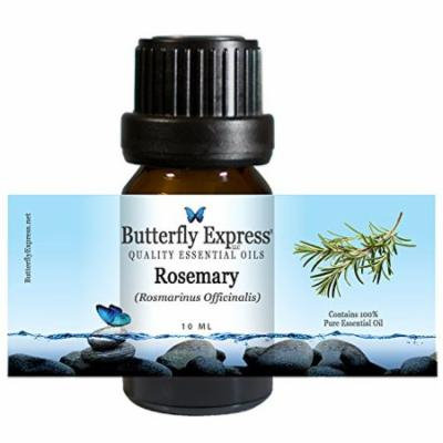 Rosemary Essential Oil 10ml - 100% Pure - by Butterfly Express